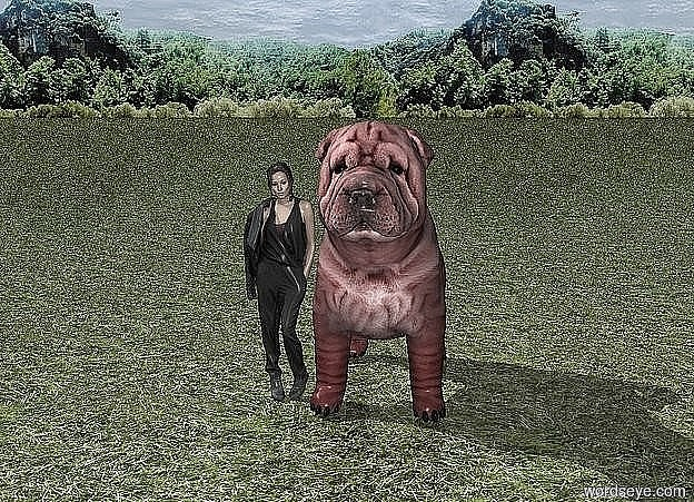 Input text: A garden.. A very large red dog. A small woman is next to the dog. It is dawn