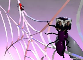 The enormous purple fly is 1.9 feet in the humongous web. It is face up. The tiny [image-9781] cube is -2 inches above the fly. It is leaning 90 degrees to the left. The huge red spider is below and in front of the fly. It is 1 foot to the right of the fly. It is face down. The red light is 1 foot behind the fly. The blue light is a foot above the red light.