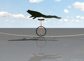 frog on a unicycle