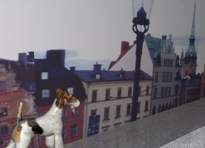 Big [image-10117] wall. The big fox terrier is in front of the wall. It is facing right. The ground is concrete.