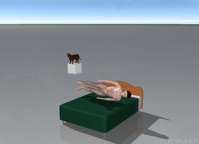 a cat is on a cloud 5 feet above ground and a man is lying on a bed