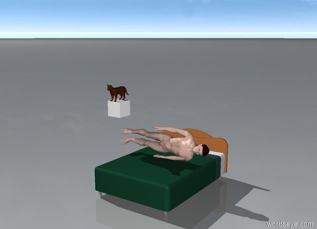 Input text: a cat is on a cloud 5 feet above ground and a man is lying on a bed