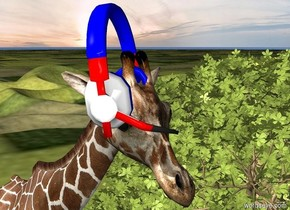 a   giraffe.right of the giraffe is a baobab tree.the ground is grass. the giraffe is 400 inch tall.a headset is 365 inch above the ground.the headset is 55 inch tall.the headset is -85 inch right of the giraffe. the headset is -55 inch in front of giraffe.the headset is facing southeast.the body of the headset is red.the frame of the headset is red.the boom of the headset is red.the padding of the headset is blue.