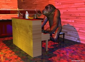 a primate.the primate is facing up.the primate is leaning 50 degrees to the south.a piano is -13 inches in front of the primate.the piano is facing the primate.a stool is -28 inches behind the primate.a glass is on the piano.a plate is 2 inches left of the glass.a bottle is 6 inches right of the glass.a banana is 8 inches right of the bottle.a 50 feet long first wall is 2 feet behind the stool.the wall is 30 feet tall.a second thirty feet tall wall is left of the first wall.the second wall is facing right.the first wall is wood.the second wall is wood.it is night.a yellow light is 2 feet in front of the piano.a blue light is 1 feet right of the primate.a red light is 5 feet above the piano.a buffet is 4 feet left of the piano.the buffet is facing right.the buffet is 6 feet tall.the piano is wood.the ground is tile.