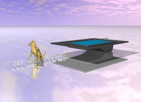 """the very large """"GET WELL SOON MEG"""" is several inches in front of the very large pool. """"GET WELL SOON MEG"""" is facing right. the ground is shiny. the enormous gold dog is 4 feet to the left of the """"GET WELL SOON MEG""""."""
