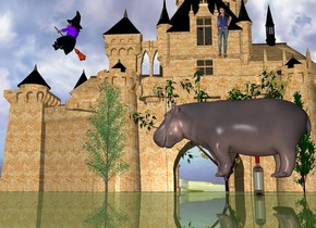 the small hippo is 7 inches in the bottle. it is -1.5 feet to the left of the bottle. it is facing left.  the small stone castle is 30 feet behind the bottle. the ground is shiny. the 4 small trees are in front of the castle. the witch is in front of the castle. she is 14 feet above the ground. she is 10 feet to the left of the hippo. she is facing left. the girl is 14 feet to the right of the witch. the shiny grass ground.