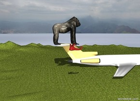 the aeroplane was in the jungle.  the gorilla was on top of the aeroplane.  the gorilla was 30 feet tall.  the shoe is on top of the plane.  the shoe is 5 feet tall.  the shoe is a bit to the left.  the shoe is a bit to the left.  the shoe is 30 feet tall  the shoe is more to the left