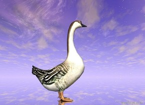 the giant goose is on the silver ground.