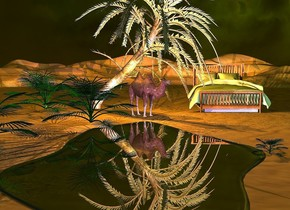 a camel is behind a 25 feet wide clear lake. it faces southeast. a date palm tree is -0.1 feet behind the lake. a  large bed is 3 feet to the right of and 1 feet behind the camel. it face 200 degrees to the south. the pillow of the bed is sage green. the blanket of the bed is sage green. 1st dwarf palm is -0.4 feet to the northwest of the lake. 2nd 8 feet tall dwarf palm is 1 feet to the front and -3.3 feet to the right of the 1st dwarf palm. 3rd dwarf palm is -3 feet southwest of the 2nd dwarf palm. 4th tiny dwarf palm is -1.5 feet right of the lake. it is midnight. the camera light is black. the sun's light is sky blue. the ambient light is olive. the sun's azimuth is 216 degrees. the sun's altitude is 86 degrees. 2 orange lights are 4 inches above the camel. 4 dim  blue lights are 5 feet above the lake. 1 violet light is 6 inches in front of the camel. 1 pink light is 3 inches above the 2nd dwarf palm