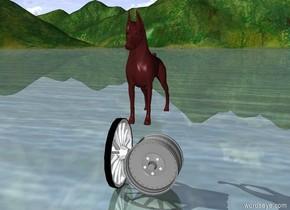 brown dog on wheels