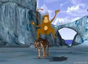 Monkey riding tiger