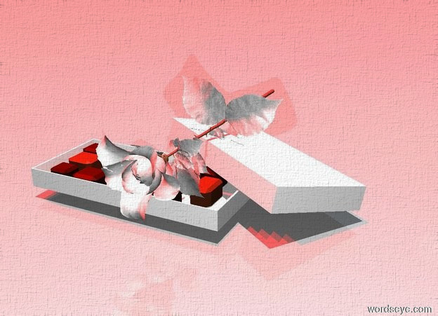 Input text: a box.a white rose is -2.2 inches above the box.the rose is face down.five red lights are 2 feet above the rose.the sun's altitude is 90 degrees.