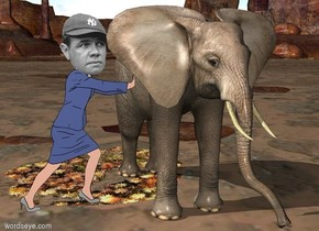 the celebrity is -1.5 feet left of a 6 foot tall elephant. the celebrity is 3 feet in front of the back of the elephant.
