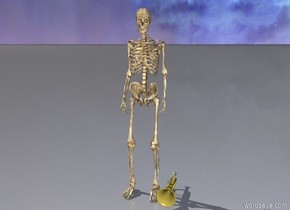 the skeleton is next to a trumpet
