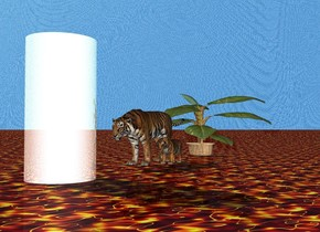 the huge chrome cylinder is 2 feet in front of the two tigers. cylinder is facing the tigers. The wide tree is 8 feet behind the cylinder. the ground is lava. the sky is large water.