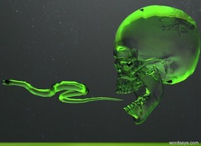 a  clear skull.the skull is 10 feet above the ground. there is a green light .1 feet under the skull. the [image-10417] sky.  There is a green light .1 feet behind the skull. there is a green light .1 feet left of the skull and 10 feet above the ground. there is a green light 4 feet above the skull. a tiny clear snake is 2 feet in the skull and 10.15 feet above the ground. the snake is facing forward. there is a green light .1 feet right of the skull and 10 feet above the ground. the snake is -.1 feet in front of the skull. the [greensky] ground.