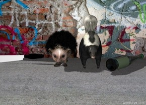 a huge hedgehog is next to a huge skunk.  a [graffiti] wall is behind the hedgehog and the skunk. the ground is pavement. a huge bottle is next to the skunk on the right. it is leaning 90 degrees to the left. it is facing southeast. a huge knife is next to the hedgehog on the left.