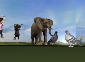 an elephant is 4 feet in front of the white pigeon. the silver wall is 5 feet to the left of the pigeon. it is facing southeast. the pigeon is facing the wall. the elephant is facing backwards. the small man is 5 inches in front and 9 feet to the left of the pigeon. he is facing the wall. he is 1 foot above the ground. the tiny boy is behind and to the right of the wall. the ground is grass. a very large second pigeon is -3 feet behind the elephant. it is facing back.