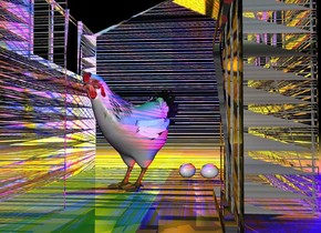a shed.a chicken is -3 feet right of the shed.two red lights are 1 feet right of the shed.the shed is 2 inches in the ground.the chicken is on the ground.the chicken is facing southwest.a first egg is 1 inches behind the chicken.the first egg is 2 inches right of the chicken.a purple light is 1 feet left of the shed.it is night.the shed is wood.two blue lights are 1 feet above the red lights.two yellow lights are 1 feet behind the shed.a second egg is left of the first egg.the second egg is facing southeast.three orange lights are 1 feet above the two yellow lights.a green light is 1 feet above the shed.