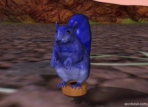 blue squirrel on doughnut