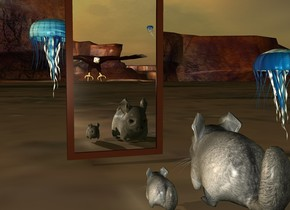 chinchilla. there is a 0.1 feet tall chinchilla 0.05 feet right of chinchilla. it is dawn. there is a 1 feet tall mirror 0.5 feet in front of chinchilla. there is a 10 feet tall eagle 120 feet behind the chinchilla. the eagle is 1 feet left of chinchilla. 5 feet tall [space] jellyfish 7 feet above eagle. the jellyfish is 1 feet left of eagle. There is .5 feet tall [space] jellyfish .5 feet left of mirror. There is a 1.5 feet tall [space] jellyfish 5 feet in front of mirror.