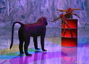 The ape is 1 foot in the barrel. Another ape is in front of the ape. It is 2 feet in the barrel. It is leaning 20 degrees to the left.another ape is -6 inches in front of the ape. It is 2.5 feet in the barrel. It is leaning 20 degrees to the right. The ground is shiny. Another ape is 3 feet in front of the barrel. It is facing back. The red light is 3 feet above and 3 feet to the front of the barrel. A blue light is 3 feet to the right of the red light. A green light is three feet to the left of the red light. The sun is black. The camera light is black.