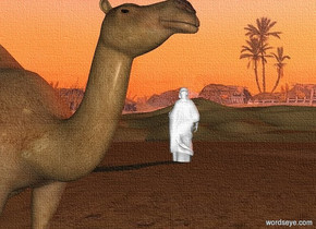 sky is 1600 foot tall desert. a camel.  a large white statue is 20 feet behind and 40 feet to the right of the camel. the statue faces northeast. sun's azimuth is 90 degrees. sun's altitude is 25 degrees. sun is peach.