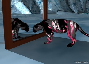 The [image-11557] big cat is facing a huge mirror. The huge mirror is facing the big cat.