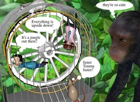 1st jungle gym is -.1 feet above the 2nd jungle gym. the 2nd jungle gym is upside  down.a man is upside down. he is -6 feet above  and -3 feet right of and -4.5 feet behind the 1st jungle gym. he leans 75 degrees to the front. he faces southeast. a 10 feet tall wagon wheel is -10 feet above the 1st jungle gym. a boy is -7.1 feet above and -3 feet right of and -5 feet in front of the first jungle gym. a 15 feet tall cage is -8 feet above the 2nd jungle gym. it faces right. 1st 1.5 feet tall rat is -2 feet right of and -11 feet above and -8 feet in front of the cage. it faces left. it leans back. a enormous  wood table is -23 feet above the 2nd  jungle gym. a 50 feet tall and 75 feet long wall is 15 feet tall texture.it is left of the table. it faces right. 2nd 1.5 feet tall rat is -1.1 feet above the 1st jungle gym. it leans to the front. a  22 feet tall chimpanzee is behind the table. it faces the cage. it leans back