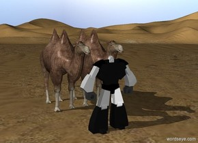 Friendly Robot is in front of camels in the desert
