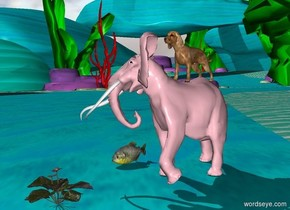 a big dog is on the pink elephant.   the huge red flower is 2 feet in front of the elephant.  a giant yellow fish is on the left of the elephant.