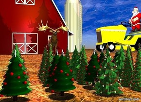 ground is 30 foot wide [dirt].   6 christmas trees. 6 beautiful christmas trees are 2 feet behind the  christmas trees. 6 festive christmas trees are  2 feet behind the christmas trees. 6 pretty christmas trees are  2 feet behind the christmas trees. 6 nice christmas trees are  2 feet behind the christmas trees.   a huge barn is 150 feet to the left of the trees. it faces right. a gigantic yellow tractor is 30 feet behind the barn.  it is noon. a huge gold light is 80 feet above the trees. sun is linen. camera light is dim. a sea mist blue light is 20 feet to the right of the trees.  a 50 foot tall santa claus is -18 feet above the tractor. he is behind the tractor's steering wheel.  a huge caribou is 30 feet to the right of the barn. it faces right. a fuschia light is 10 feet above and in front of the caribou.