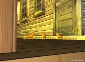 a house.a 1st bird is -45 inches in front of the house.the 1st bird is 3 inches above the ground.the 1st bird is -9 feet right of the house.a 2nd bird is 3 inches left of the 1st bird.the 2nd bird is in front of the 1st bird.the 2nd bird is facing southeast.a 3rd bird is 12 inches in front of the 1st bird.the 3rd bird is facing northeast.a yellow light is in front of the house.