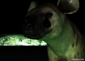 a hyena.a giant shiny cyan drop is -8.4 inches above the hyena.the drop is -5.4 inches right of the hyena.the drop is -4 inches in front of the hyena.it is night.a 1st peppermint green light is 1 feet in front of the hyena.a malachite green light is 1 feet left of the hyena.a 2nd peppermint green light is 1 feet right of the hyena.