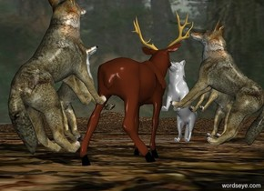 A deer is on the leaf ground. The 1st wolf is -1 feet to the south of the deer. The 1st wolf is leaning 45 degrees to the back. The 1st wolf is facing the deer.  The 2nd wolf is -1 feet to the east of the deer. The 2nd wolf is leaning 45 degrees to the back. The 2nd wolf is facing the deer.  The 3rd wolf is -1 feet to the west of the deer. The 3rd wolf is leaning 45 degrees to the back. The 3rd wolf is facing the deer.  The 4th wolf is -1 feet to the southwest of the deer. The 4th wolf is leaning 45 degrees to the back. The 4th wolf is facing the deer.   The 5th wolf is -1 feet to the north of the deer. The 5th wolf is leaning 45 degrees to the back. The 5th wolf is facing the deer.  Sky is forest.