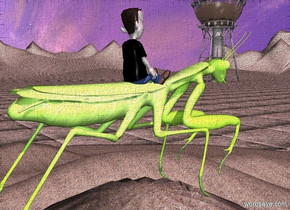 a hill.the hill is grass.the grass is 6 inches tall.a giant insect is -1 inches above the hill.the ground is 80 feet tall.the sky is leaning 85 degrees to the south.the ground is rock.the rock is 1 feet tall.a 6 inch tall man is -5 inches above the insect.the man's shirt is black.the man is metal.the sun is pink.a shiny tower is 80 feet right of the insect.the tower is on the ground.the tower is 83 feet in front of the insect.