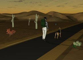 a 2000 feet long road.a man is on the road.the road's sidewalk is sand.a backpack is -30 inches above the man.the backpack is -22 inches behind the man.a dog is 2 feet in front of the man.the dog is left of the man.a 1st cactus is 10 feet right of the man.it is on the ground.a 2nd cactus is 6 feet left of the man.it is on the ground.a 3rd cactus is 20 feet in front of the 1st cactus.the 3rd cactus is 2 feet right of the 1st cactus.a 4th cactus is 15 feet right of the 3rd cactus.a 5th cactus is 25 feet in front of the 3rd cactus.a large lizard is behind the 2nd cactus.the lizard is facing the dog.it is dawn.a joshua tree is 15 feet in front of the 4th cactus.