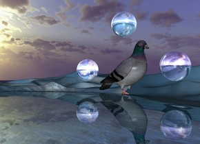 There is a large 50% reflective lake. A 40 foot tall dove. The sun's altitude is 180 degree. The ground is a sky. There is a 20 feet wide 100% reflective sky sphere 10 feet in front of the dove. The sphere is 10 feet above the ground. There is a 20 feet wide 100% reflective sky sphere 10 feet behind the dove. The sphere is 10 feet above the ground. There is a 20 feet wide 100% reflective sky sphere 5 feet above dove.