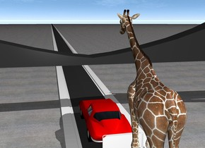 There is a 5000 feet long street. On the street is a car. behind the car is a very big baggage cart. On the baggage cart is a giraffe. In front of the car is a bridge. The ground is pavement.