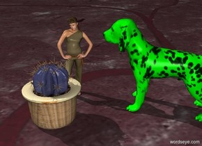the tall woman is 2 feet behind the blue cactus.  the blue cactus is 8 feet tall. there is a green dog with blue ears two feet to her right. the dog is 12 feet tall.  the dog faces the woman. the ground is pink. the 4 foot plaid cat is between the woman and the dog