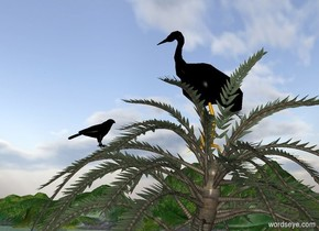 The huge black crane is 11 feet in the tree. The large black hawk is 3.9 feet in front of the crane. It is facing back.