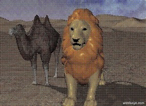 A large lion is 2 feet to the right  of a camel. It is sunny.