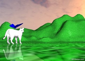 there are pink clouds in the sky.  A big blue butterfly on the head of a white cat. The white cat is on the green grass.