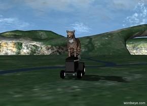 bobcat riding a lawnmower chasing jayden