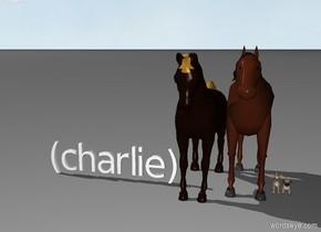 (charlie) horses dogs