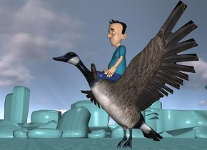 an enormous  goose is 1 feet above the ground. On the goose is a boy. The ground is water.