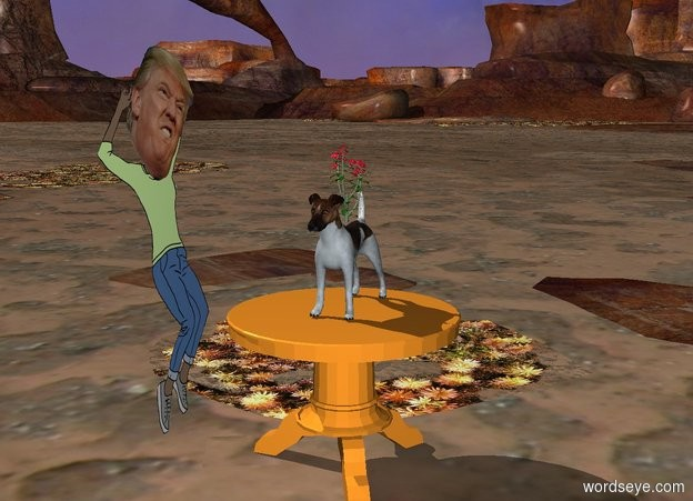 Input text: There is a dog on a table. There is a flower on top of the dog. There is a trump facing towards the dog.