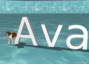 """A tiny dog next to """"Ava"""". The background is water. the ground is water."""
