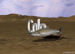 ´Cole´. fish