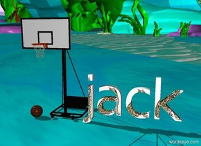 """small baseball. a huge basketball hoop is to the left of  cat """"jack""""."""